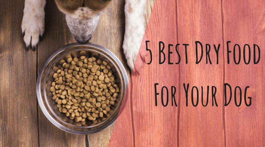 5-Best-dry-dog-food