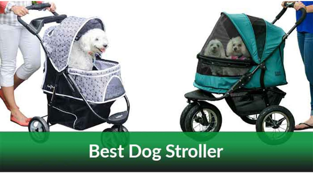 best-dog-strollers-review