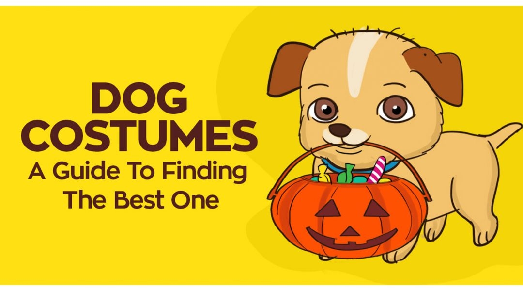 best-halloween-costumes-for-puppies-review