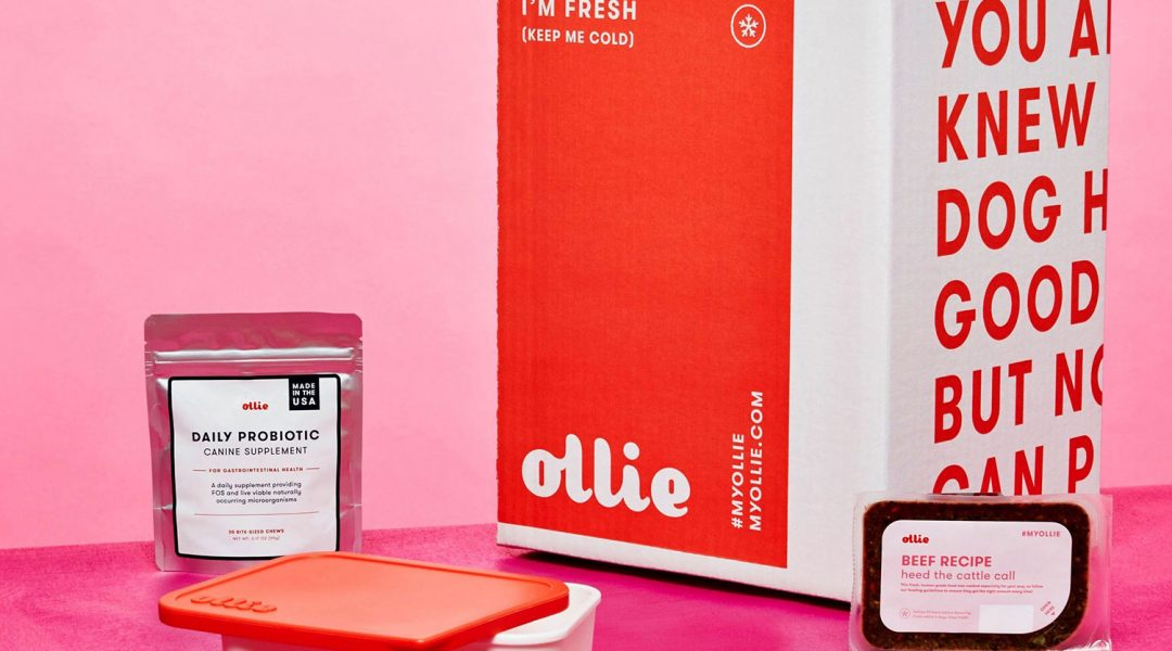 ollie-beef-pink-background