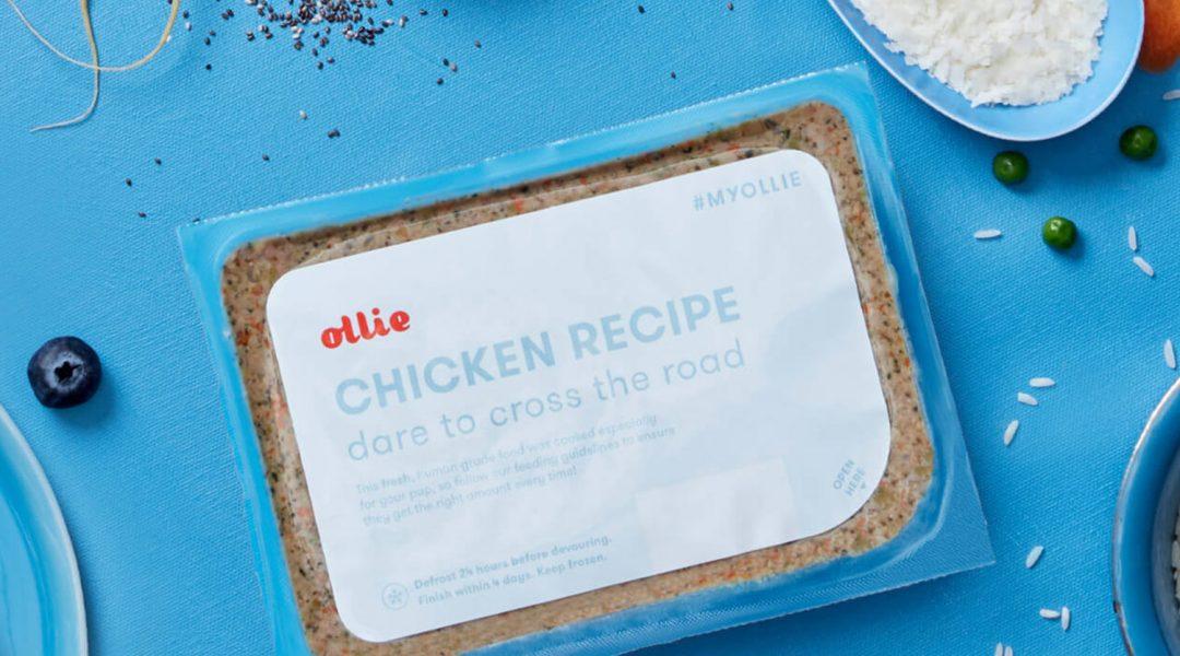 ollie_chicken