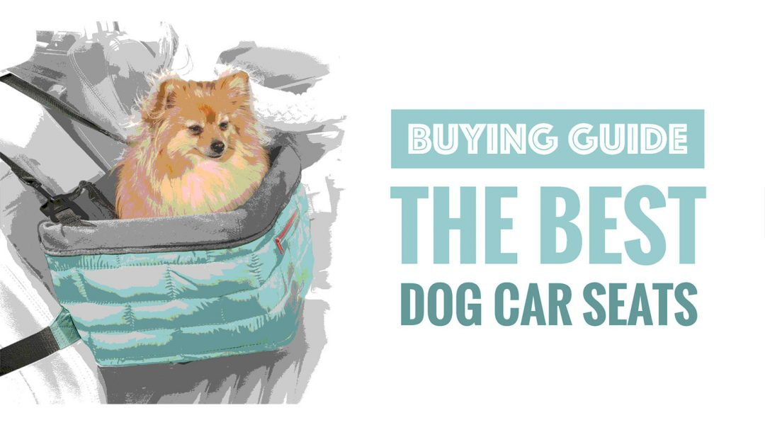 top-6-best-dog-car-booster-seats-review